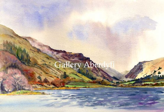 Talyllyn Colours