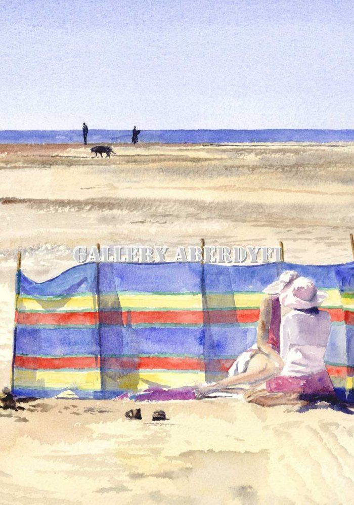 Mid Summer Aberdyfi